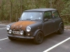 ratty mayfair mini 1992
